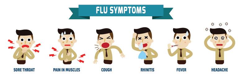 influenza-pic2.jpg