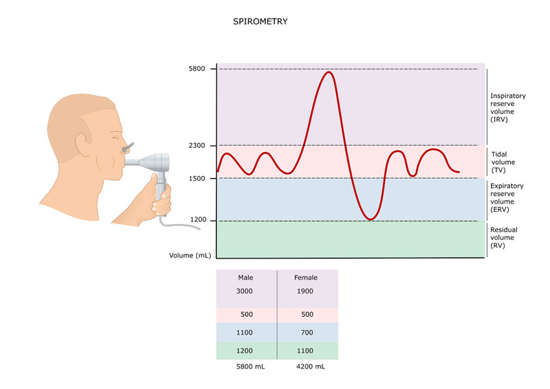 pulmonary-func-test-pic1.jpg